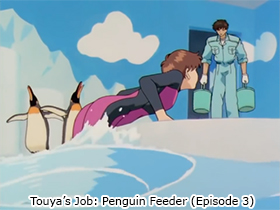 Touya's Job: Penguin Feeder (Episode 3)